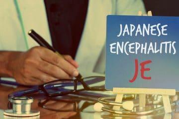 primary-symptoms-of-japanese-encephalitis