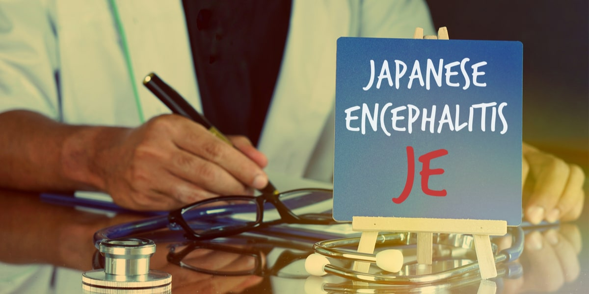 – What are the Primary Symptoms of Japanese Encephalitis?